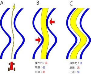 脊椎の基本16